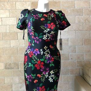 Calvin Klein Scuba Floral Dress